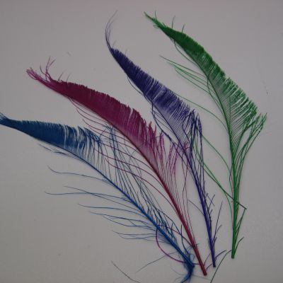 Peacock Feathers edge